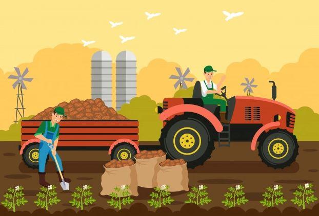 مالیات بر کشاورزی